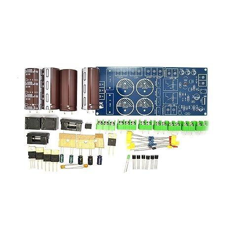 Amazon com: DIY Kit for Stereo Speaker Amp w/Power Supply