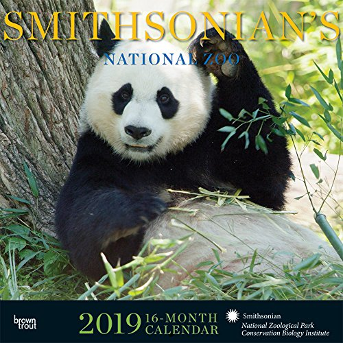 Smithsonian National Zoo 2019 12 x 12 Inch Monthly Square Wall Calendar by Hachette, Zoology Science Wildlife Animals (Multilingual Edition)