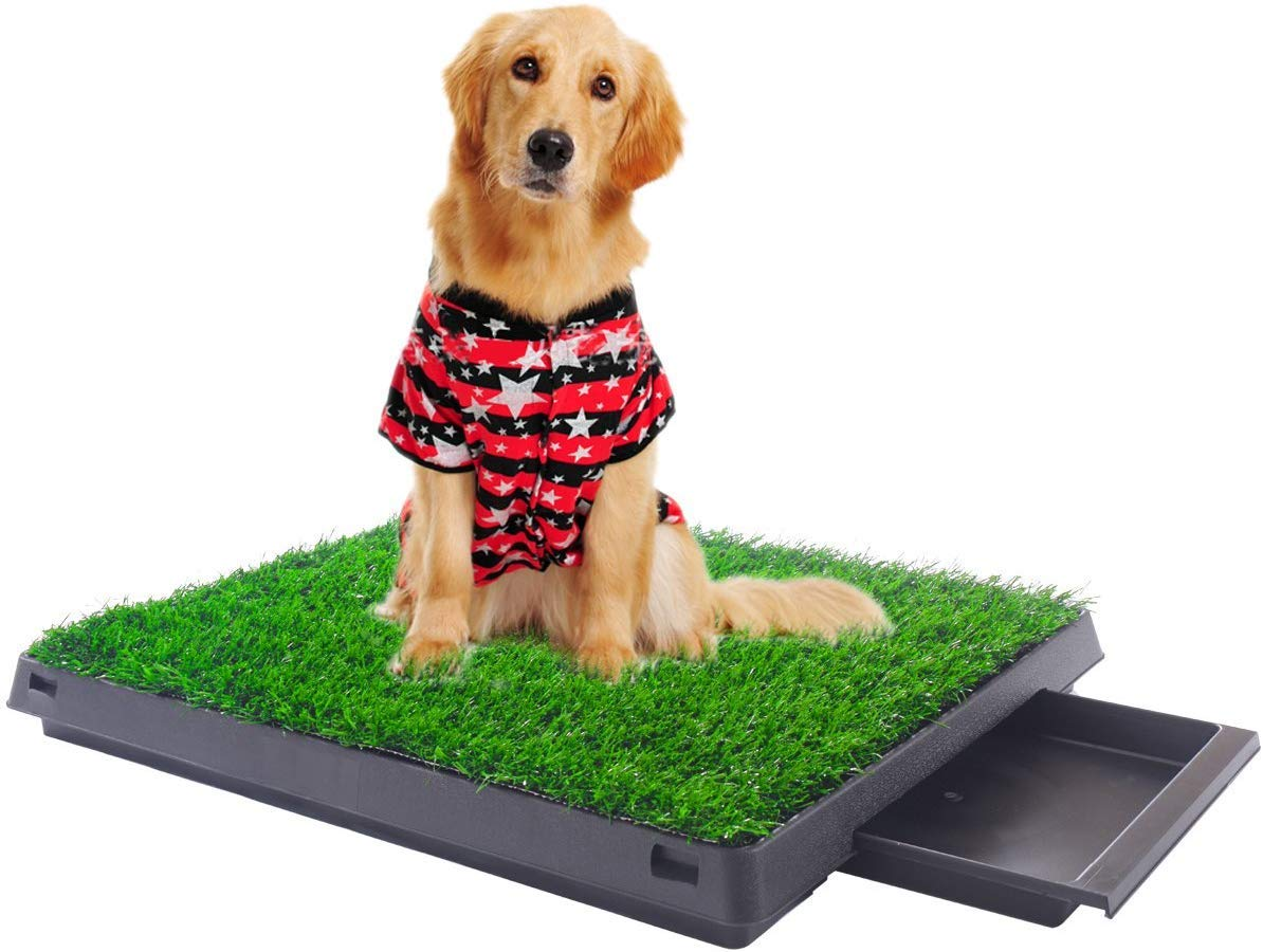 "Sandinrayli Indoor Outdoor Dog Puppy Potty Trainer Pad Grass Toilet Mat Tray Restroom for Small Cats and Dogs 25""x20"""