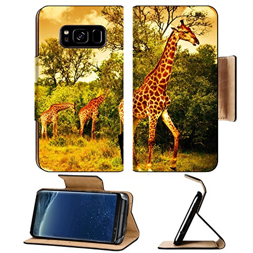 Liili Premium Samsung Galaxy S8 Plus Aluminum Snap Case Image of a South African giraffes big family graze in the wild forest wildlife animals safari Kruger National Park bushes of ()