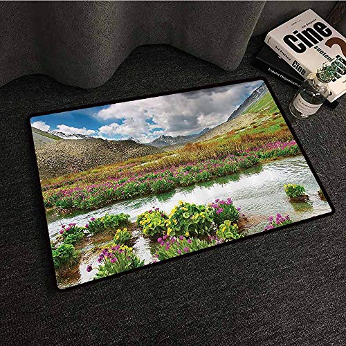 Vw Valley Wash - Highlands Nature Landscape Decor Collection Thin Door mat Mountain Valley with Blooming Flowers and Springtime Design Machine wash/Non-Slip W24 xL35 Purple Green Ecru