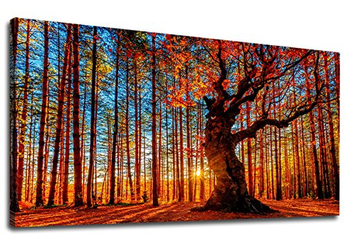 yearainn Large Canvas Wall Art Forest Sunset Red Tree Leaves Fall Landscape Canvas Artwork Contemporary Nature Picture for Home Office Wall Decor 24