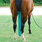 Sleazy Sleepwear For Horses Standard Horse Tail Bag Solids Black