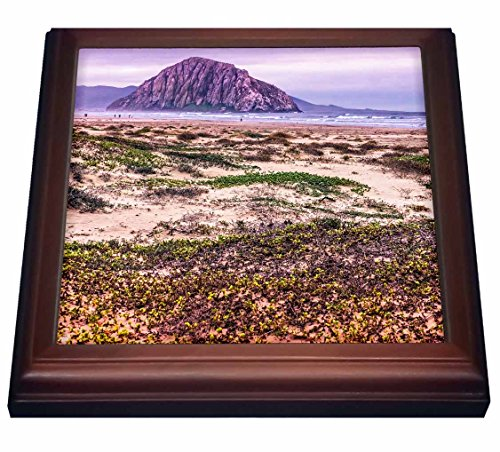 3dRose trv_110807_1 Morro Rock and Bay Trivet with Ceramic Tile, 8 by 8