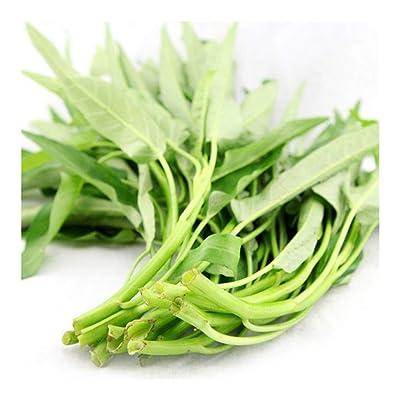 Slim Leaf LiuYe-KongXinCai 150 Seeds Chinese Asian Vegetable Seeds for Planting : Garden & Outdoor
