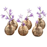 Chive - Smasak, Small Round Glass Flower Vase, Decorative Rustic Floral Vase for Home Decor Living Room Centerpieces and Events, Single Flower Bud Vase -  Bulk Set of 6 (Gold)