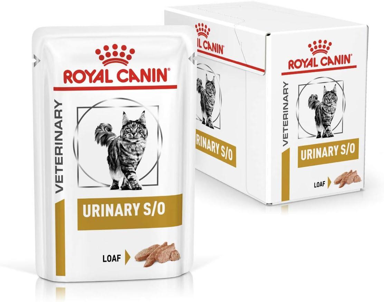 ROYAL CANIN Alimentacion 1 Unidad 300 g: Amazon.es: Productos para ...