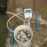 Beacon Pet FishShockerStunner, 12V Susan 735MP