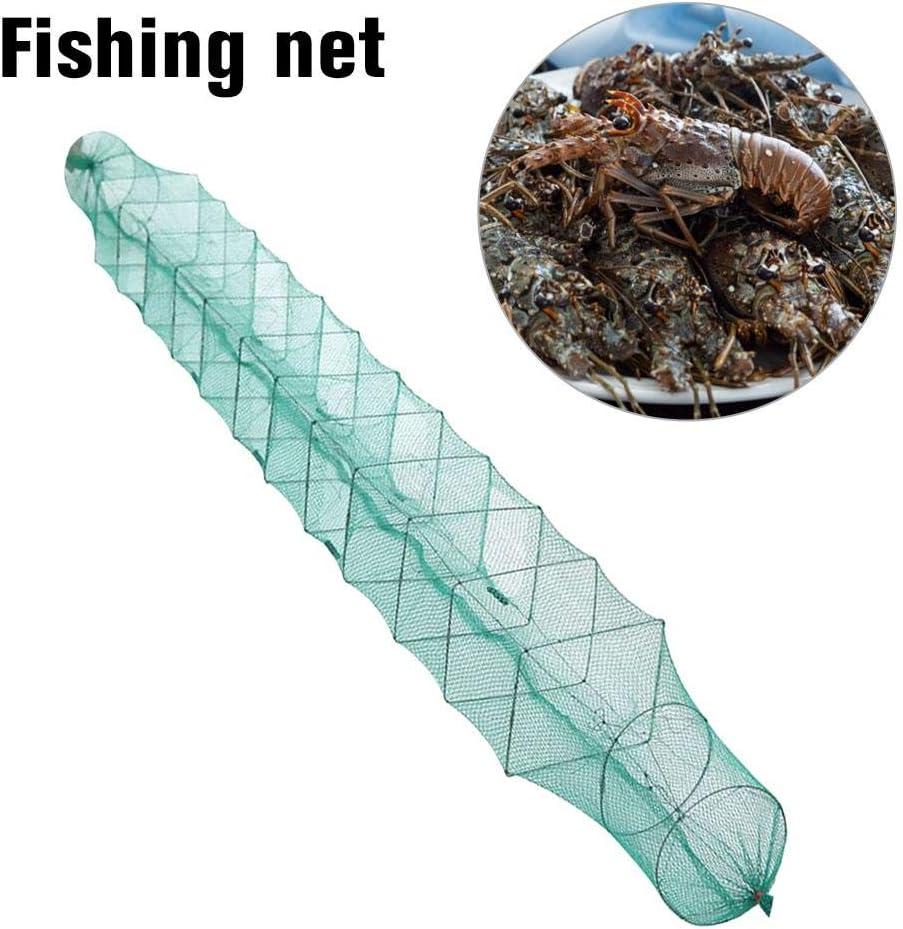 cypressen Quadrat K/öder Fischreuse Aalreuse Krebsreuse Praktisch Zusammenfaltbar Reuse K/öderfischreuse