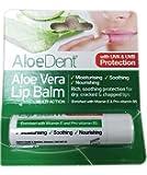 Aloe Dent Aloe Vera Lip Balm with Tea Tree & Lysine 4g (Pack of 3)