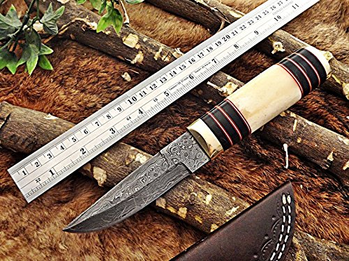 "10"" Damascus Skinning Knife, Bone Brass & Horn Round Scale, Leather Sheath"