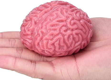 Juguetes de pelotas de látex en forma de cerebro de UPXIANG ...