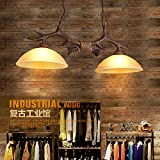 BGmdjcf The Nordic Retro Resin Creative Dual Head Antlers Glass Chandeliers Hanging Clothes Shops In The Living Room Restaurant Cafe Lamps , Dual Head200
