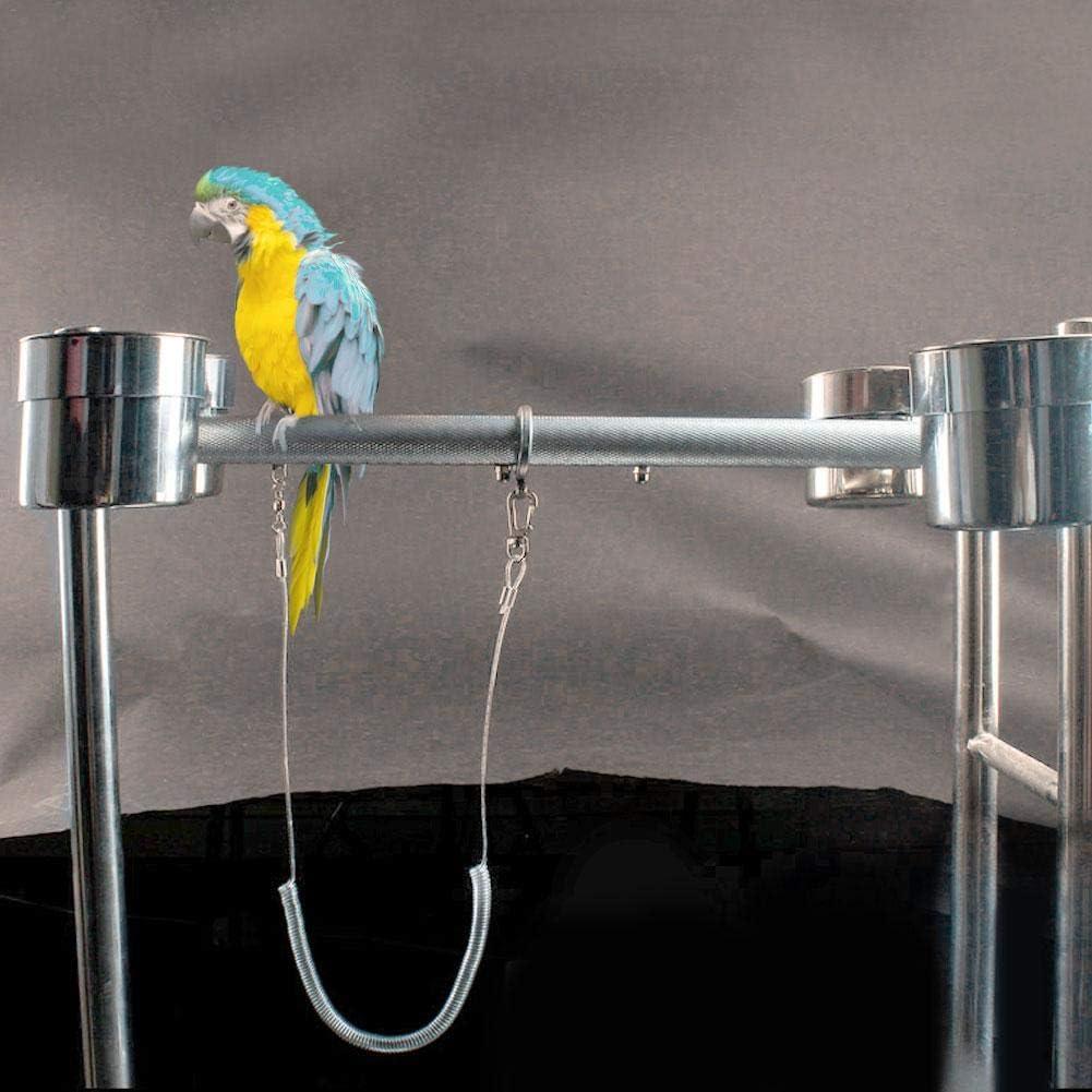 POPETPOP Pappagallo Fibbia Catena Cavigliera Pappagallo Piombo Pappagallo Accessori Formazione Poggia Piedi Uccello Catena di Rame per Pappagallo Uccello Volare Allaperto