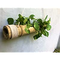 NAOE Hanging Planter Made of Bamboo