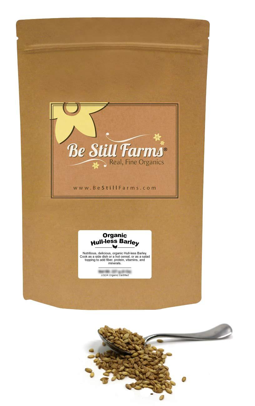 Be Still Farms Organic Hulless Barley (1lb) Quick Cooking Barley - Similar to Organic Pearl Barley - Glutinous Barley - Cebada en Grano - Barley In Bulk - Not Hulled Barley - Vegan Snack - Vegetarian by Be Still Farms