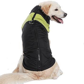 Treat Me abrigo chaqueta Otoño Invierno Para Perro Mediano/Gran impermeable con banda reflectante azul rosa verde, color verde, tamaño XXL: Amazon.es: ...