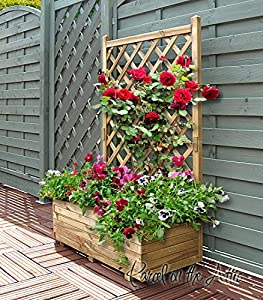 Wooden Garden Flower Planter With Trellis For Climbing Plant Support  (Double)