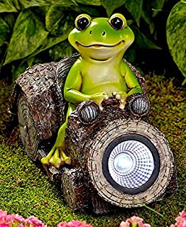 Charmant Woodland Frog In Solar Car Statue