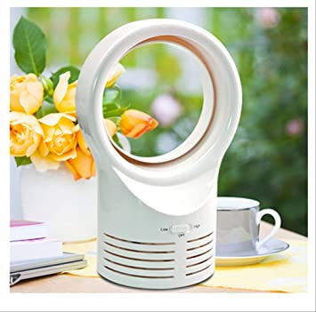 Ventiladores de Viento de Mesa Naturales con Mini Ventilador ...