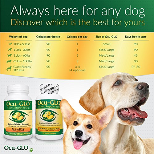 Ocu-GLO Vision Supplement for Small Dogs - Lutein, Omega-3 Fatty Acids, Grapeseed Extract - Support Optimal Eye Health & Vision in Dogs - Antioxidants for Canine Ocular Health - 90ct SNIP CAPS by Ocu-GLO (Image #2)