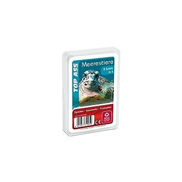 TOP ASS Tier-Quartett: Meerestiere: Amazon.de: Spielzeug
