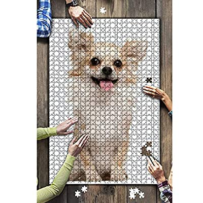 1000 Pieces Wooden Jigsaw Puzzle Chihuahua 2 Years Old Sitting in Front of White Background Animals Fun and Challenging Board Puzzles for Adult Kids Large DIY Educational Game Toys Gift Home Decor: Toys & Games