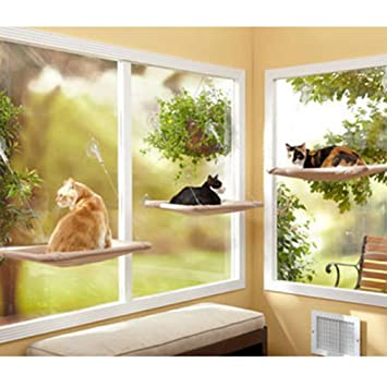 window cat hammock bed sunny seat window mounted hanging cat pet bed hammock window cat hammock bed sunny seat window mounted hanging cat pet      rh   amazon ca