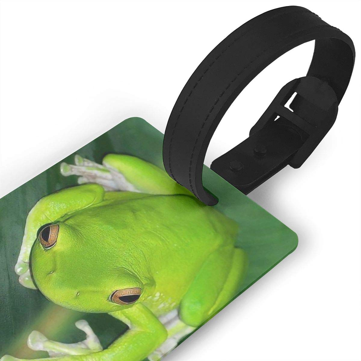 2 Pack Luggage Tags Frog Baggage Tag For Travel Bag Suitcase Accessories