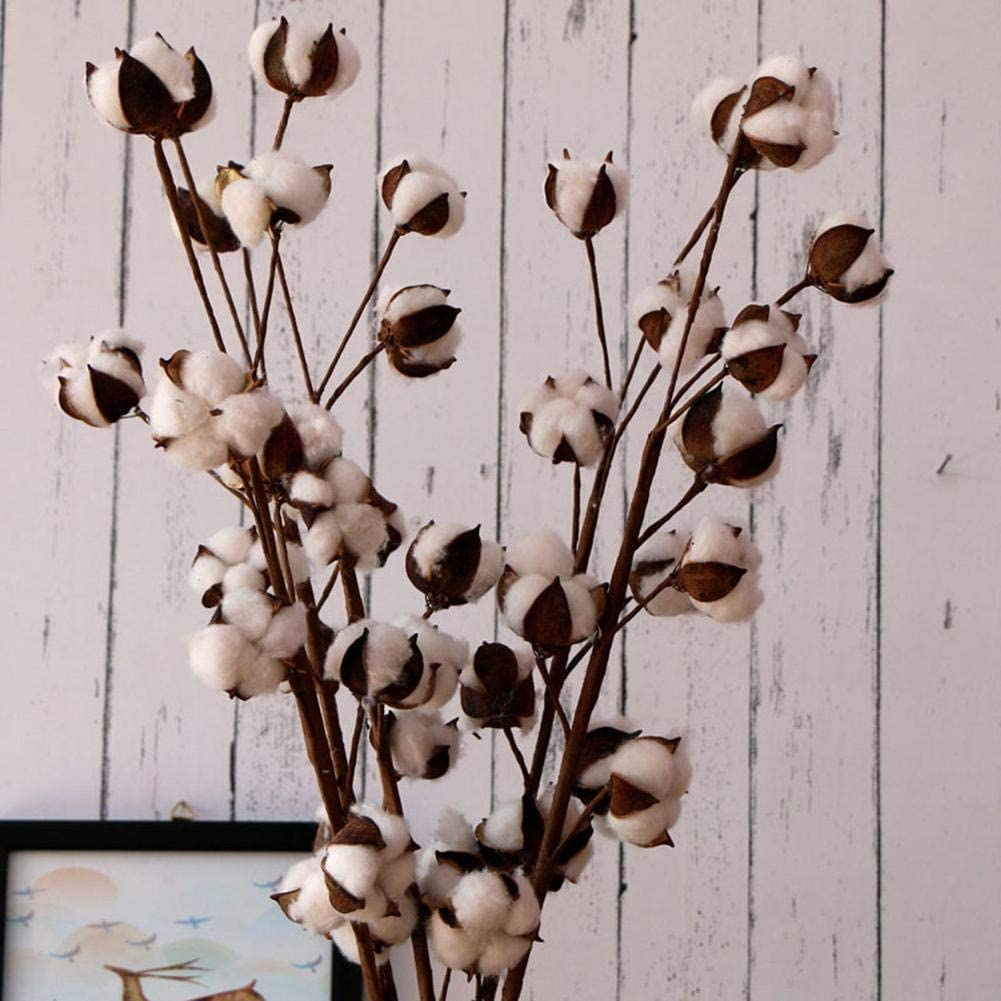 cosyhouse - Flores Naturales secas de algodón con Forma de Tronco ...