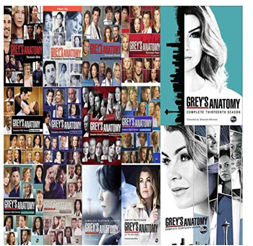 Price comparison product image Grey's Anatomy: Complete Series Seasons 1-14 DVD