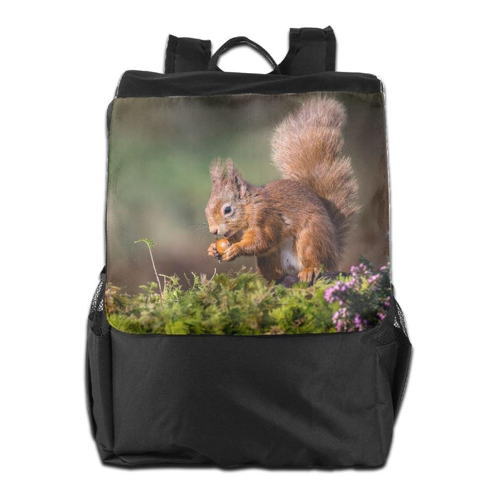 Arsmt Squirrel Eating Pine Nut アウトドアバックパック リュックサック オフィスバッグ B07K2TY1N7 ブラック One Size