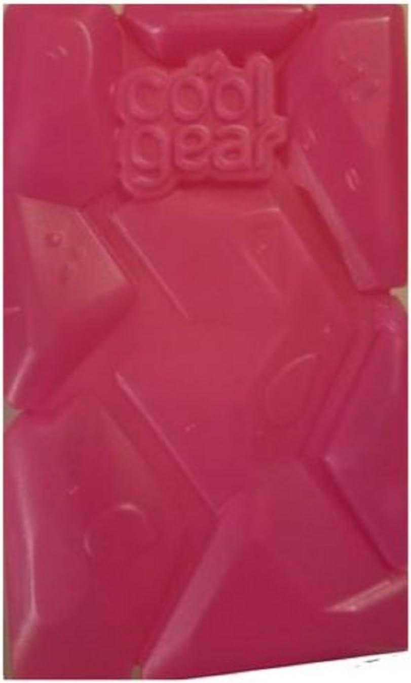 Cool Gear Mini EZ-Freezer Ice Block (Pink)
