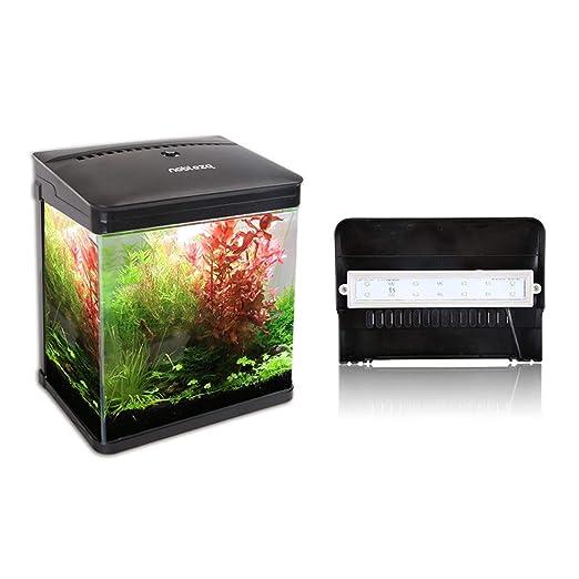 Nobleza - Acuario de Cristal con Cubierta y Luces LED. Sistema de Filtro de 14 litros. Color Negro: Amazon.es: Productos para mascotas