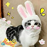 Cat Costume, EYLEER Pet Cat Kitten Small Dog Costume Cat Bunny Rabbit Hat with Ears for Kitten Cats & Small Dogs Party Costum