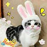 Cat Costume, EYLEER Pet Cat Kitten Small Dog Costume Cat Bunny Rabbit Hat with Ears for Kitten Cats & Small Dogs Party…