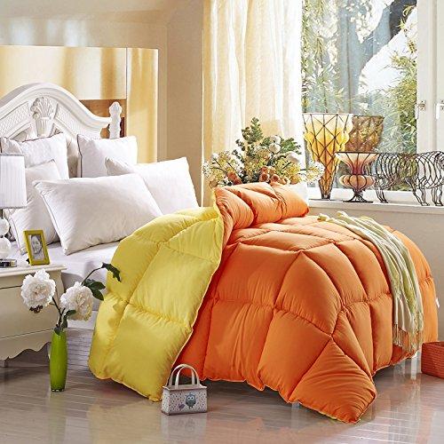 Yellow And Orange Comforter Teen Comforter Kids Comforter Down Alternative Comforter, Queen Size
