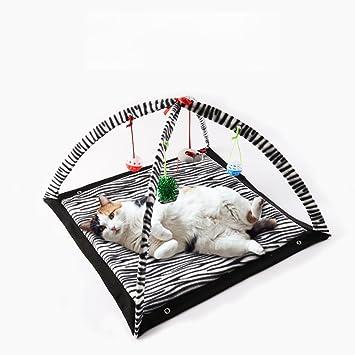 Aqi7 Cebra Rayas Plegables Tienda De Gato, Mascota Gatear Jugar Tienda, Cama Cat Comfort Entertainment: Amazon.es: Productos para mascotas