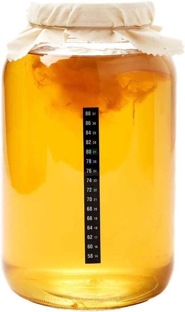 Kombucha Home Brew Kit - Includes Kombucha SCOBY & Strong Starter Liquid. Make Delicious Kombucha at Home with our USA Made 1 Gallon Glass Brew Jar, Temp Gauge and Custom Tea Blend