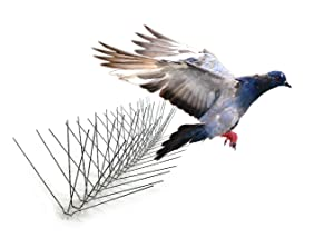 Bird-X Extra Wide 8-inch Stainless Steel Bird Spikes - Metal Roof Guard, Pigeon and Bat Deterrent, Animal and Pest Control Supplies, Covers 10 Feet