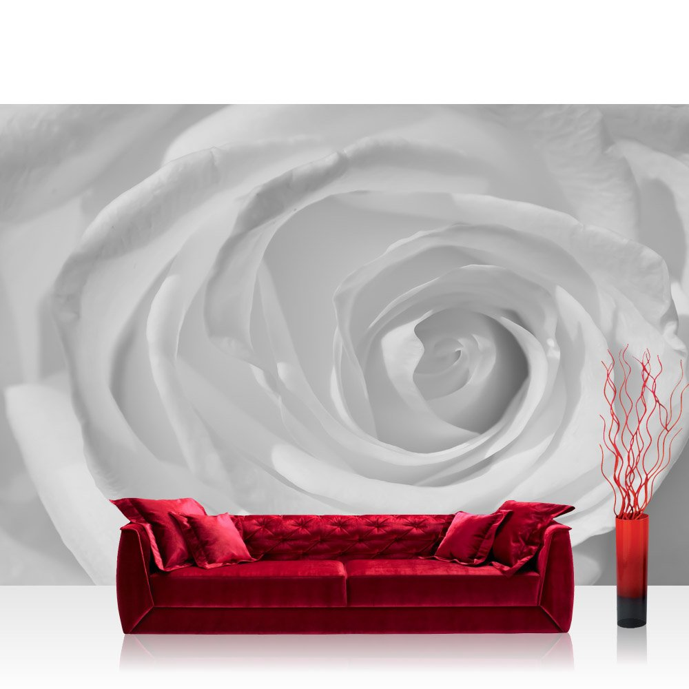 Vlies Fototapete 312x219cm PREMIUM PLUS Wand Foto Tapete Wand Bild Vliestapete - Blumen Tapete Rose Pflanzen romantisch Wellness weiß - no. 3159