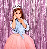 Treasures Gifted Light Baby Pink Sorority Door and Wall String Tinsel Curtains Supplies Decorations 3 x 8 Feet, Pack of 2 Metallic Shimmer Shine Foil Fringe Backdrop