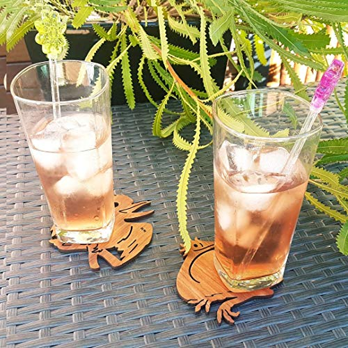 Australian Coasters, Australian Gifts, Animal Coasters, Animal Coasters for Drinks, Wood Coasters for Drinks, Wooden Animal Coasters, Australian Animals Kookaburra & Emu, Twin -
