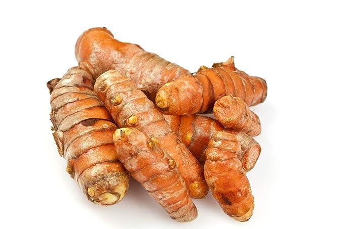 KAIRALI COLLECTIONS Turmeric High Quality Rhizomes [ NOT ROOTS] - garden fresh rhizomes 100 gm