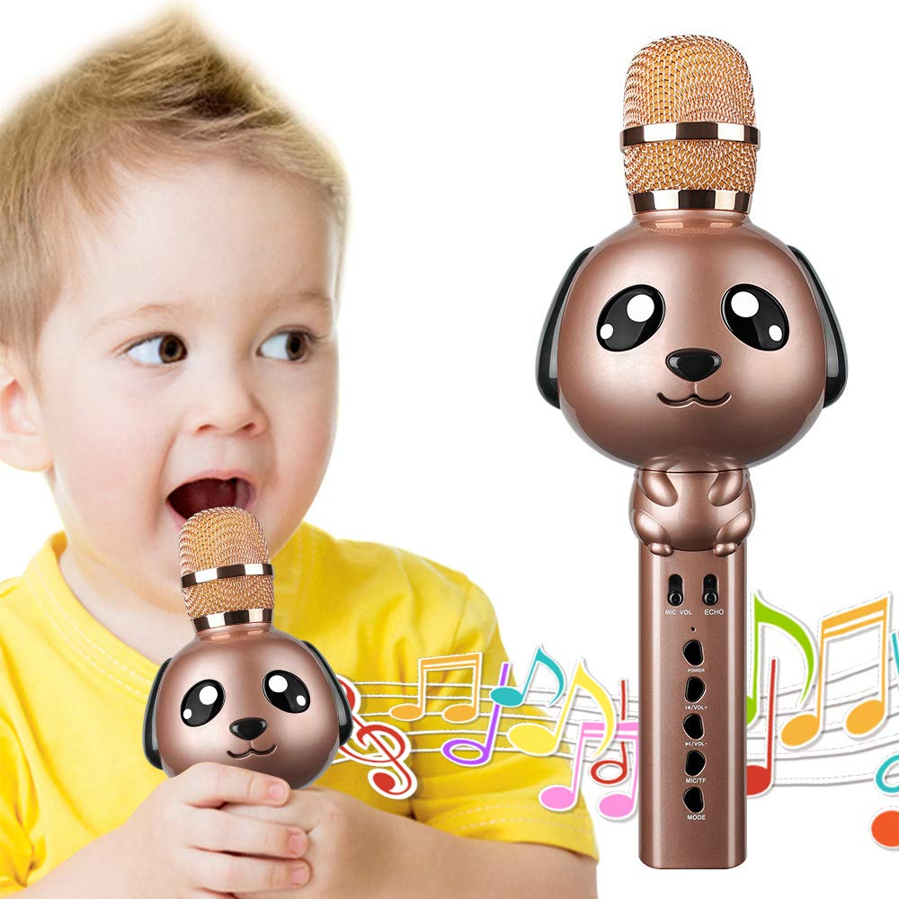 Leeron Karaoke Microphone, Kids Microphones Portable Handheld Wireless Bluetooth Karaoke Mic Machine for Home, Party, Birthday Gifts and Kids Girls Toys Age 5 6 7 8 9 by Leeron (Image #1)
