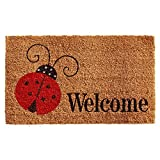 Home & More 121431729 Ladybug Welcome Doormat, 17'' x 29'' x 0.60'', Multicolor