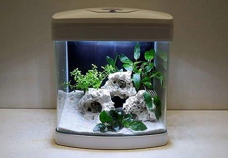 XCUBE - Nanoacuario completo en color blanco con iluminación LED, luz nocturna y filtro