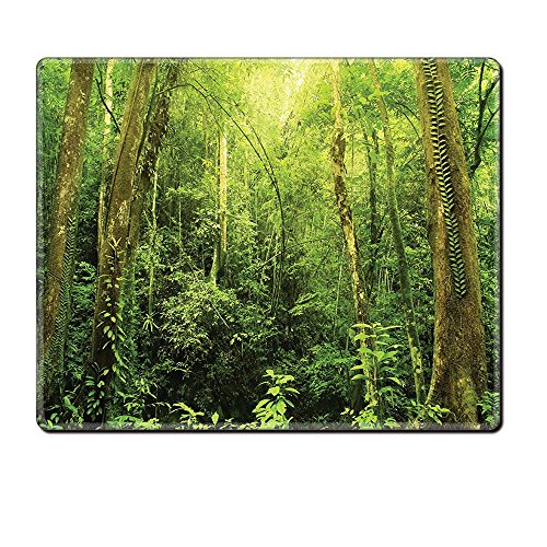 Mouse Pad Unique Custom Printed Mousepad Rainforest Decorations Tropical Rainforest Landscape Malaysia Asia Green Tree Trunks Uncultivated Wood Green Stitched Edge Non Slip (Tree Huge Trunk)