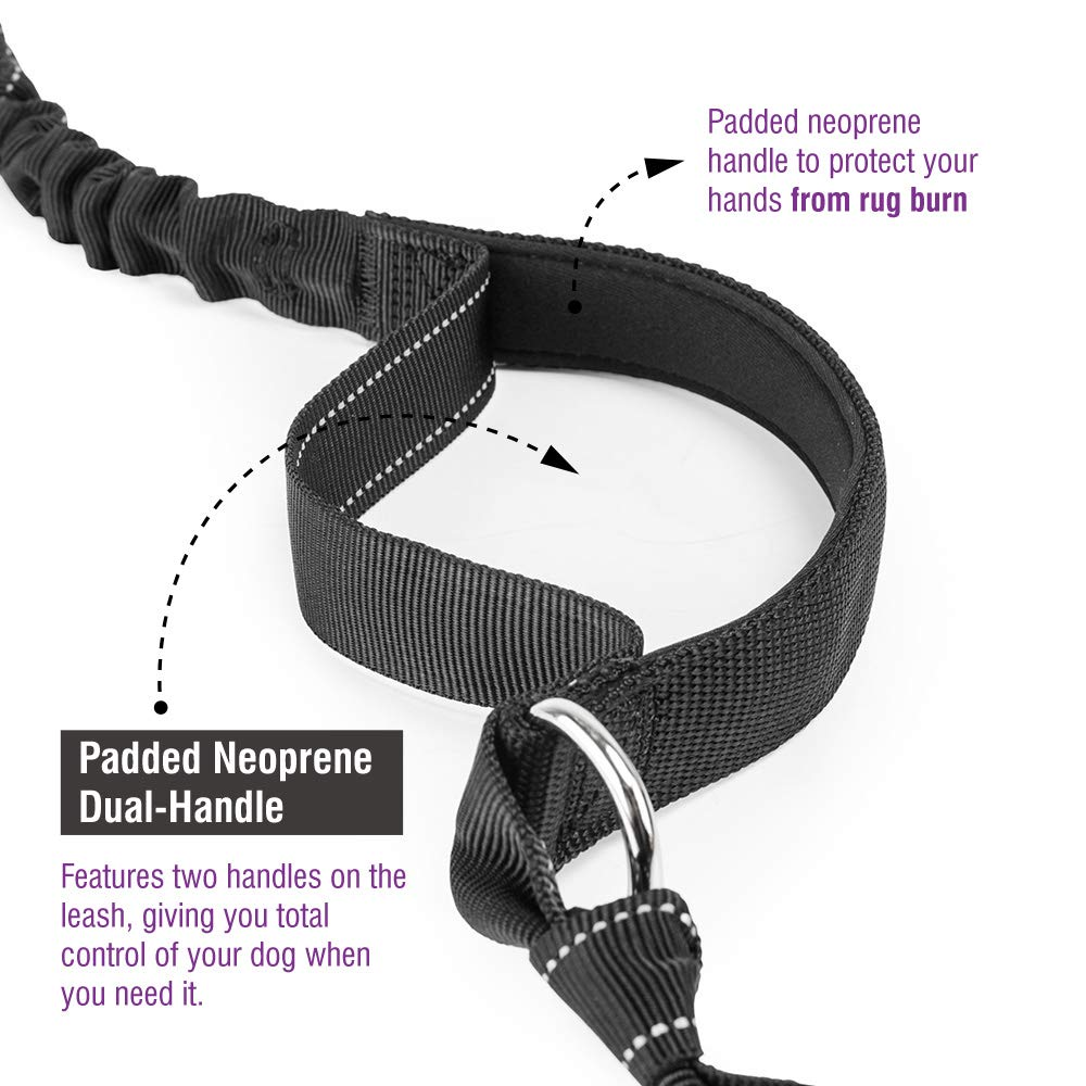 """Dog Walking Training Belt Shock Absorbing Bungee Leash up to 180lbs Large Dogs Phone Pocket Water Bottle Holder Fits All Waist Sizes from 28/"""" to 48/"""" FURRY BUDDY Hands Free Dog Leash"""