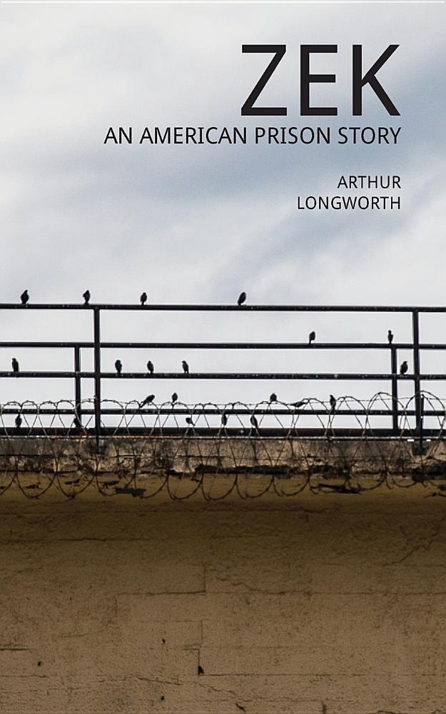 Zek: An American Prison Story PDF